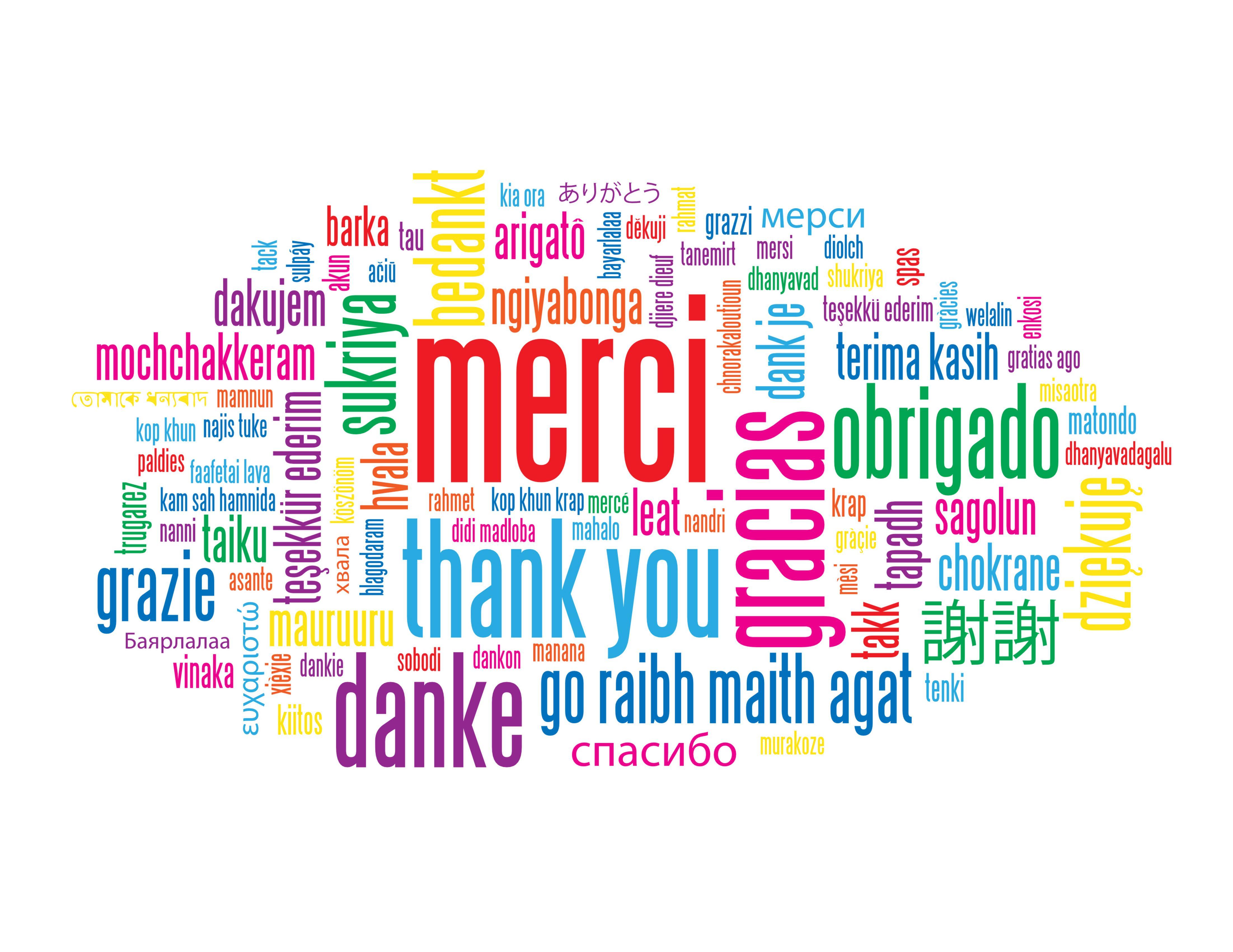 Merci à tous de suivre mon blog !